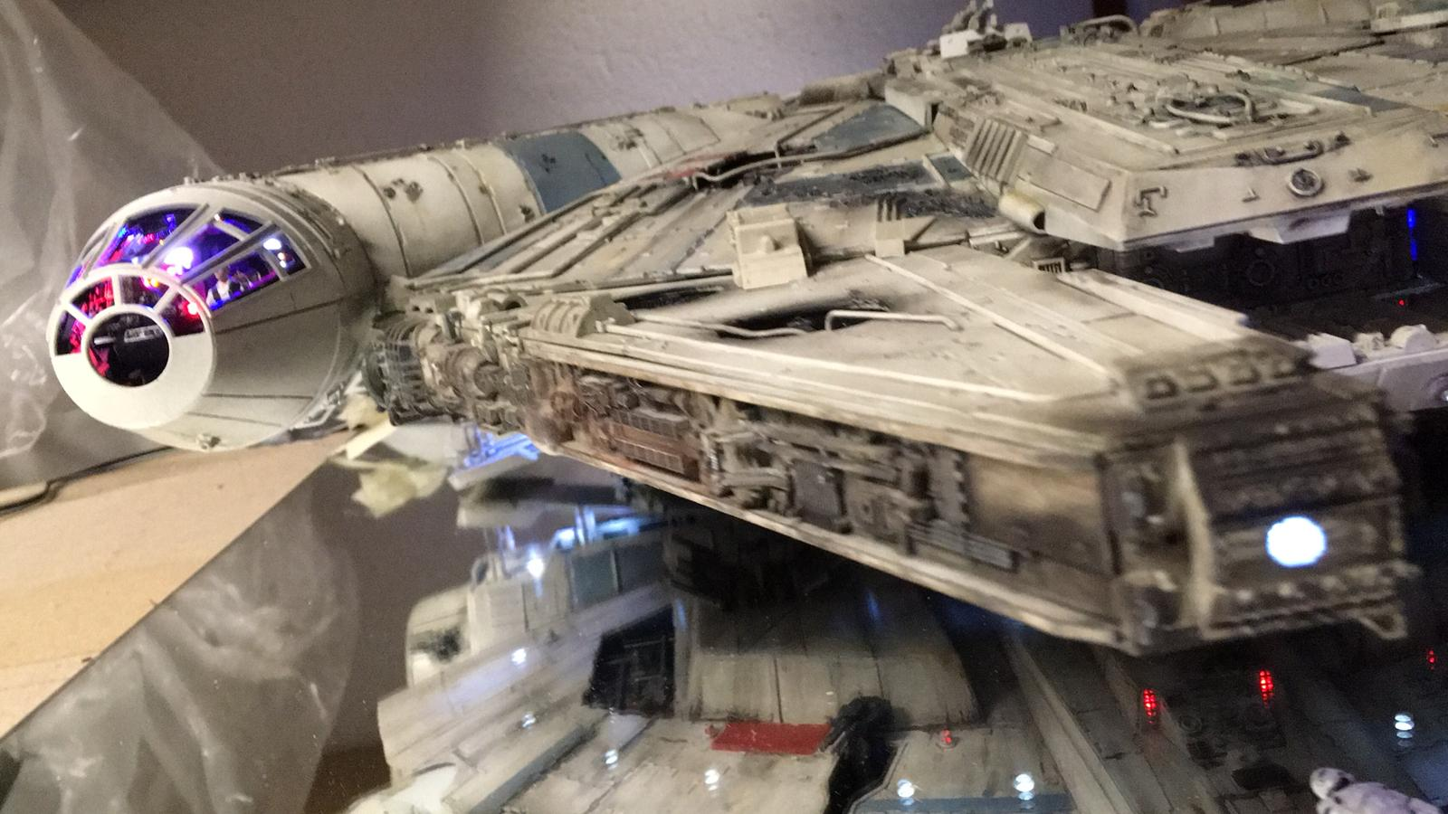 falcon_vorne_re_auf_cockpit.jpg